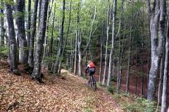 Trail verso il Passo dei Tre Faggi
