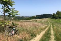 Sentieri del Rubicone presso Monteleone