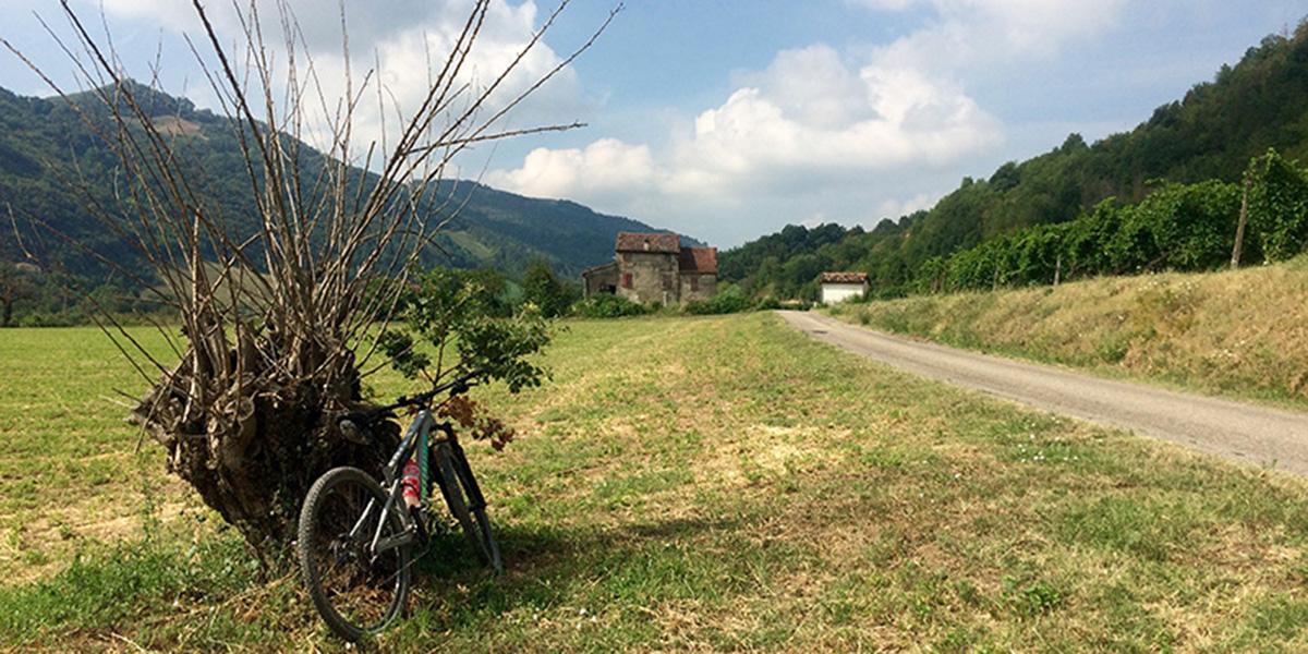 Meldola Tour